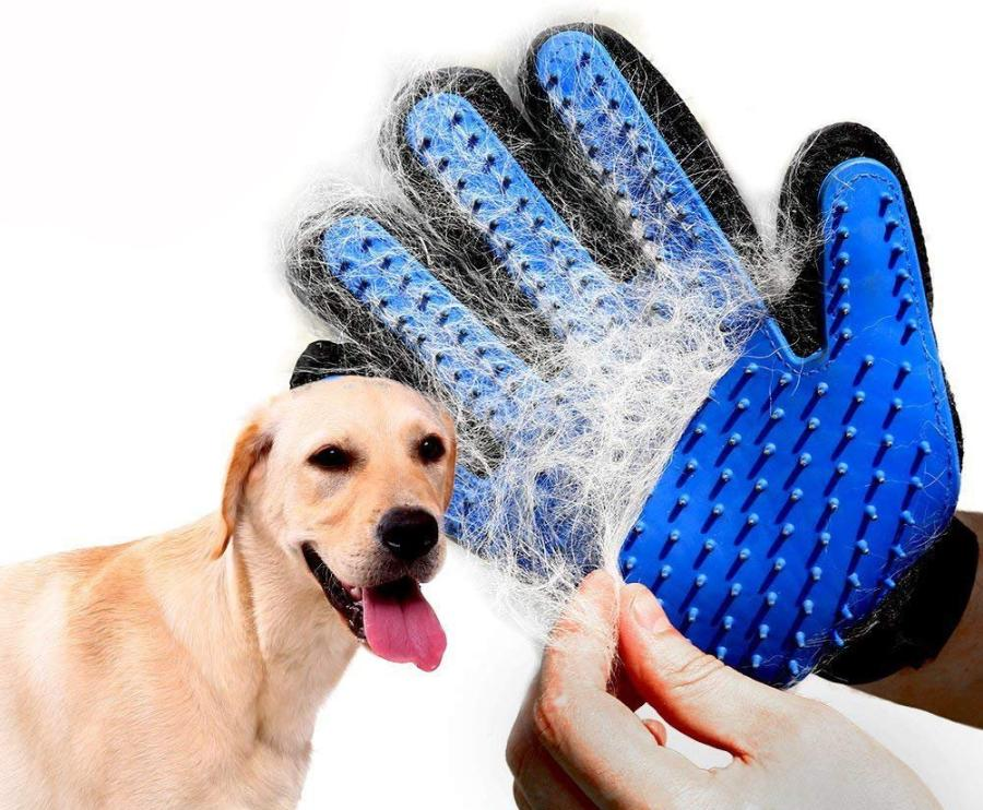 What to Consider When Choosing Dog Grooming Gloves 1