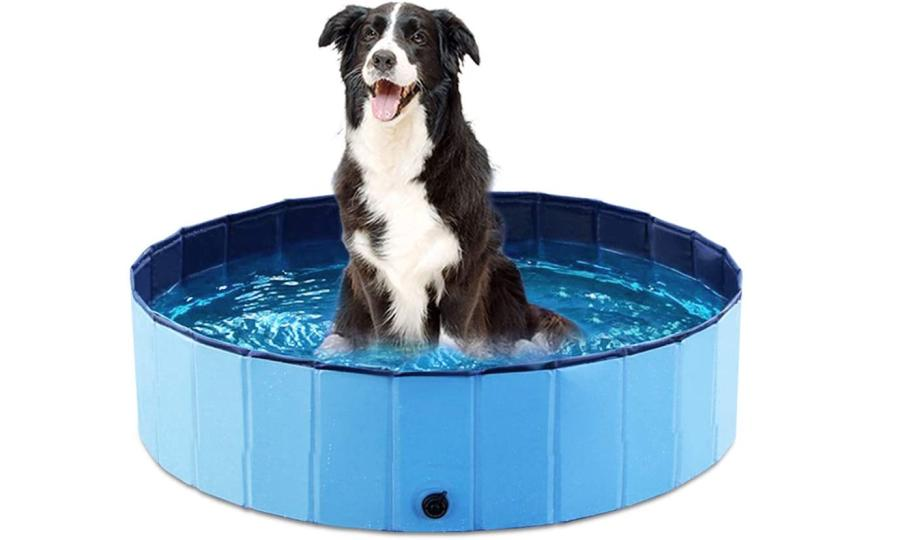 Things To Consider When Choosing A Dog Grooming Bathtub 5