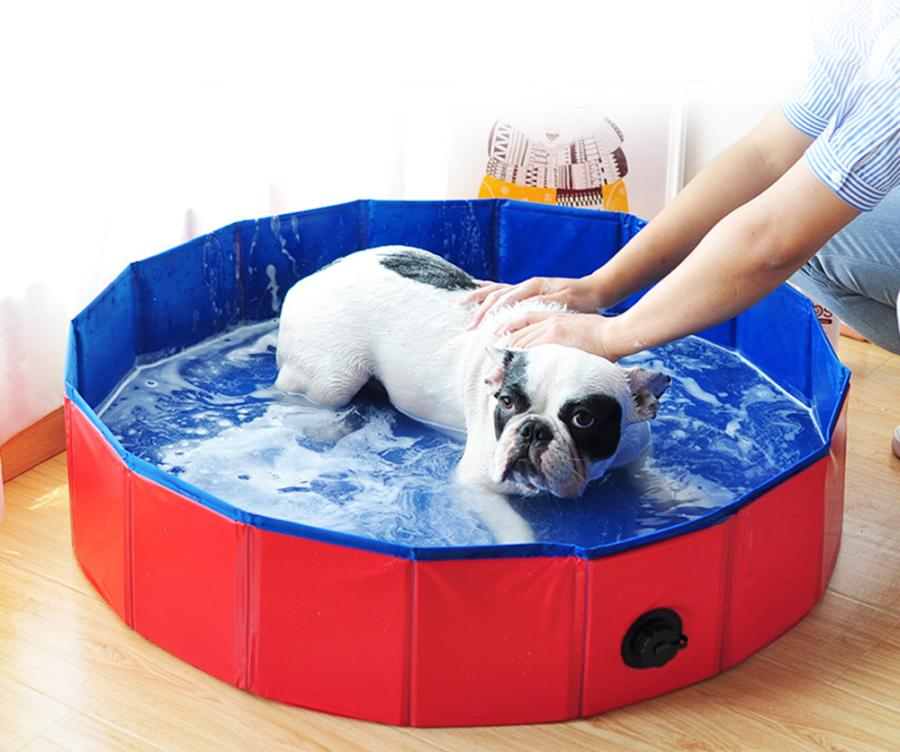 Things To Consider When Choosing A Dog Grooming Bathtub 1