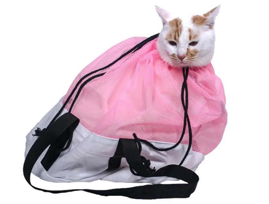 What to Consider When Choosing a Cat Grooming Bag 2