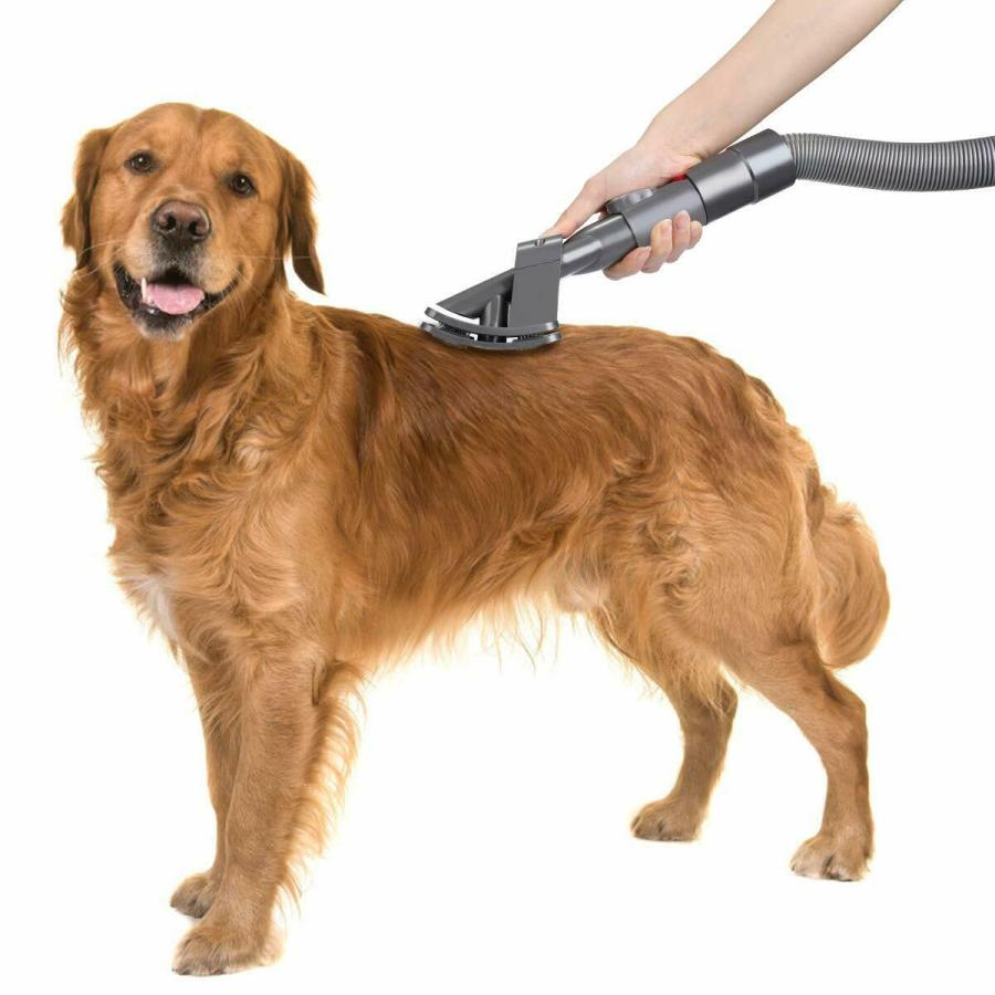 What to Consider When Choosing a Dog Grooming Vacuum 3